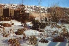 Alparosirvetur1999minni
