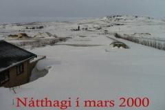 NHmars2000minni